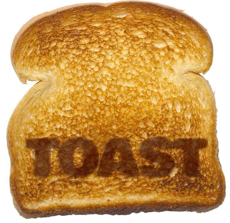 Toast VR Logo