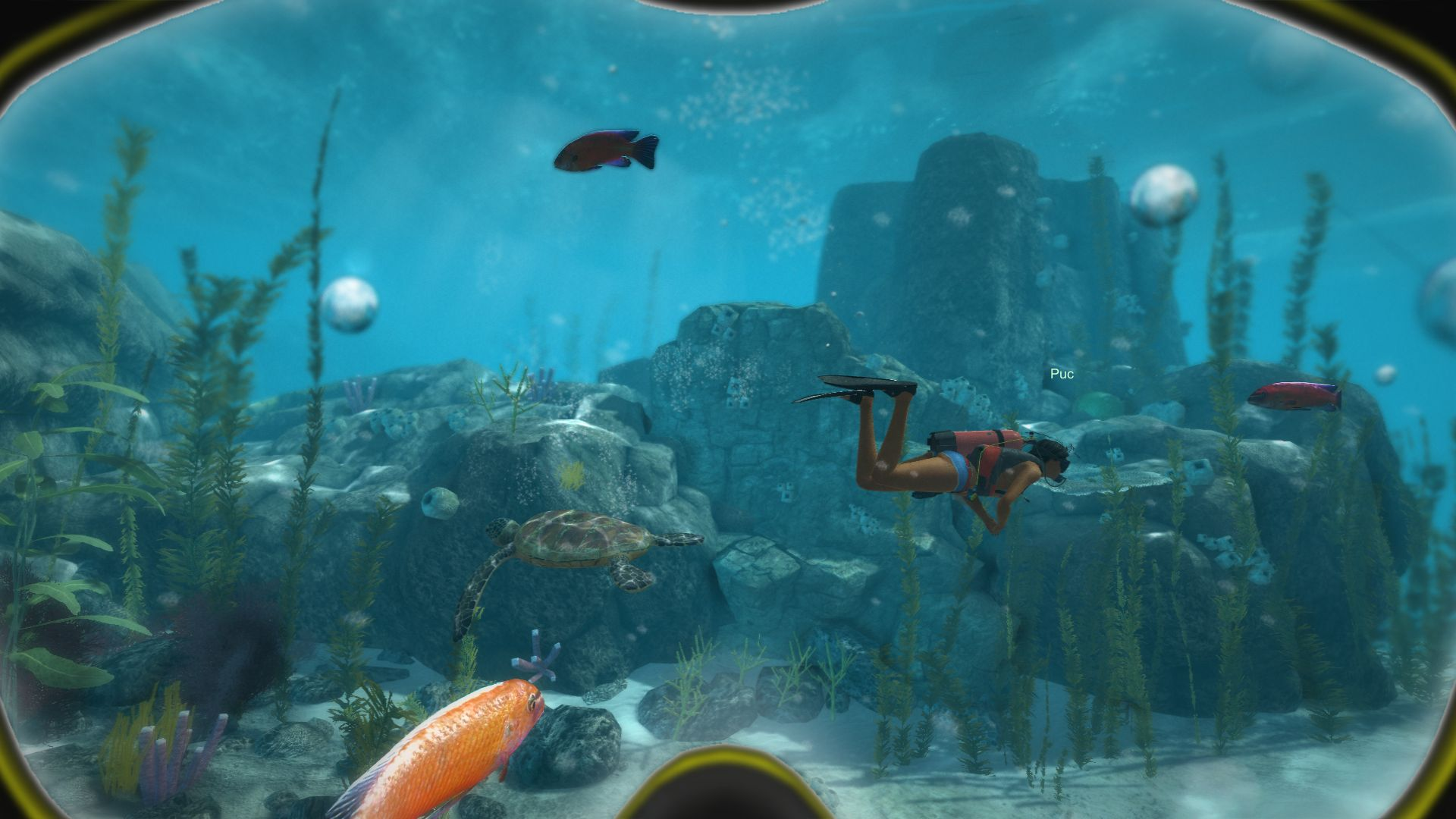 World of Diving Screenshot