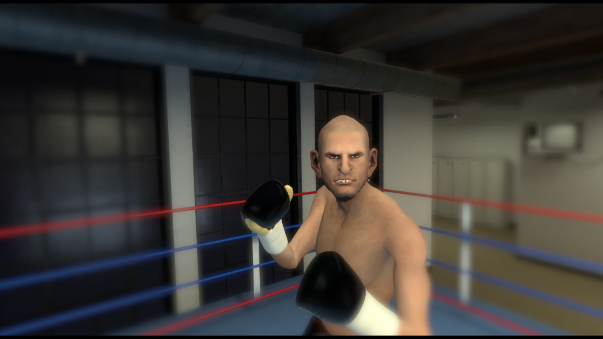 Thrill of the Fight Screenshot