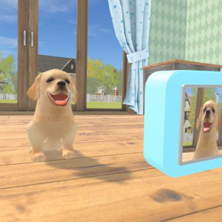 Dream Pets VR Screenshot
