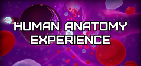 Human Anatomy Experience Header