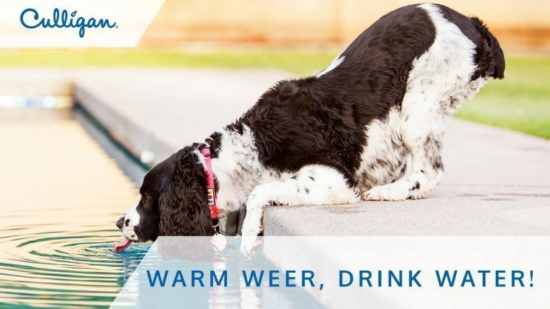 Warm weer, drink water! 11