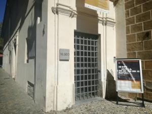 'I fantasmi sulla torre': Halloween al museo Civico di Cuneo