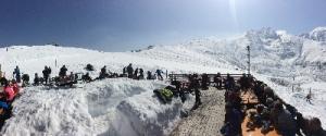 A Bagnolo Piemonte '4 zampe sulla neve'