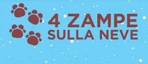 Bagnolo Piemonte: seconda edizione di '4 zampe sulla neve'
