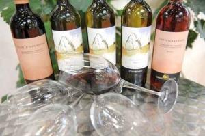 Degustazione di vini Libera Terra a Fossano