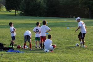 'Patentino' obbligatorio per tutti gli allenatori: ora i corsi siano resi più accessibili