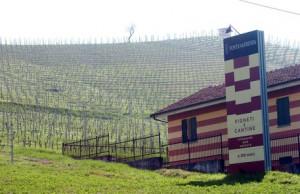 Fontanafredda compie 160 anni e riapre uno storico locale albese
