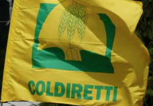 Coldiretti Cuneo: i mercati di 'Campagna Amica' non vanno in vacanza
