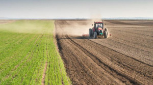 'Regione s'impegni per recuperare risorse e finanziare le imprese agricole gestite da giovani'