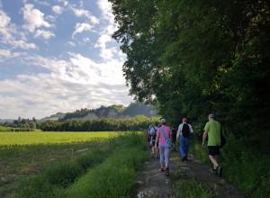 Clavesana: il 2 settembre si passeggia tra le vigne aspettando la vendemmia