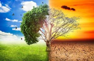 'Il clima cambia, cambiamo anche noi': avviso pubblico del Parco Fluviale Gesso e Stura