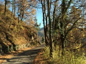 Busca, i fondi Bim Valle Maira destinati alle strade collinari