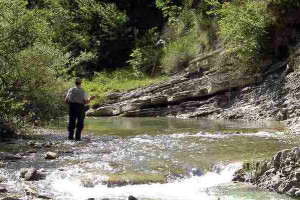 Si rinnova il Comitato Pesca della Provincia di Cuneo