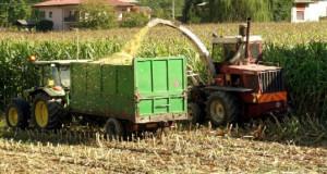 Agricoltura, il Piemonte ha una nuova legge quadro