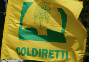 In aumento le frodi alimentari, continua la lotta di Coldiretti contro la 'malavita nel piatto'