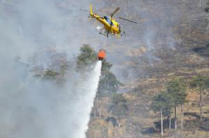 Dichiarato lo stato di massima pericolosità per incendi boschivi su tutto il territorio regionale