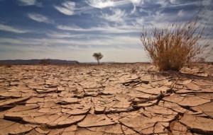 'I cambiamenti climatici sono una realtà con cui fare i conti: è bene attrezzarsi per tempo'