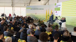 Accordi di filiera, Coldiretti: 'Un investimento sul futuro per dare valore a chi produce e qualità a chi consuma'