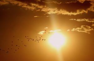 Cuneo nella top ten in Italia per 'indice di calore'