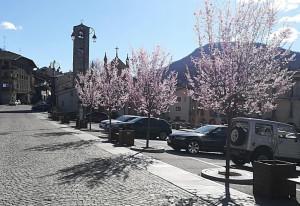 'In montagna la siccità invernale ha anticipato la primavera'