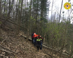 Tragedia a Venasca: boscaiolo muore durante il taglio un albero