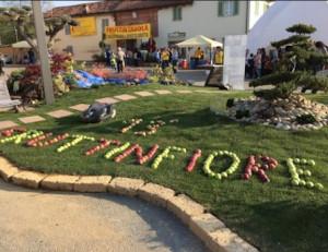 Oltre 30 mila visitatori a Lagnasco per 'Fruttinfiore'