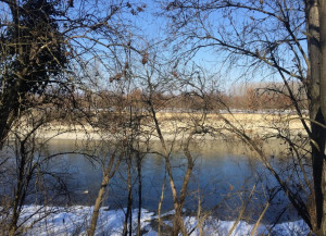 Alba: la regione Piemonte ha istituito 'la Zona naturale di Salvaguardia del fiume Tanaro'