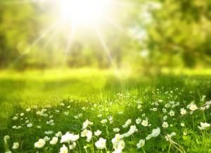 Il foehn spazza via il maltempo: sulla Granda torna a splendere il sole