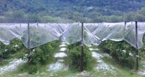 Dalla Regione oltre 2 milioni di euro alla Granda per le strutture irrigue danneggiate dalla piogge del 2016