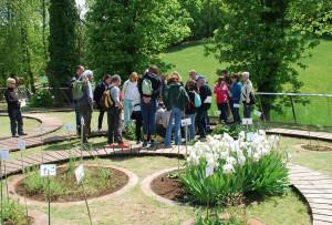 A Chiusa di Pesio il 17, 18 e 19 maggio c'è 'Il Fascino delle piante'