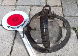 La Municipale libera un cane che aveva una zampa serrata in una tagliola