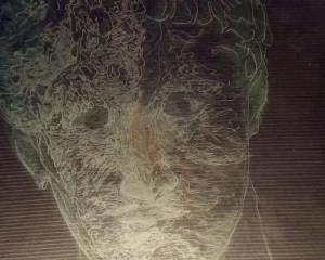 Paola Capellino e le 'Apparenze asimmetriche' in mostra a Cherasco
