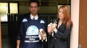 Lite tra animalisti per una pagina Facebook, a processo l'ex 'braccio destro' di Michela Brambilla