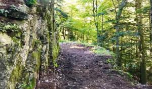 Il Parco Alpi Marittime cerca volontari per i lavori di manutenzione della strada militare del 'Passo del Duca'