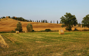 Da Cuneo le congratulazioni al neo presidente della Proprietà Fondiaria nazionale