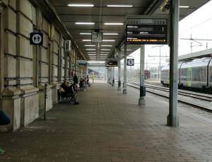 I Vigili del Fuoco nel sottopasso della stazione di Cuneo per la presenza di un serpente