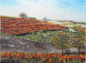 'Paesaggi e colori di Langa', a Cherasco la mostra della pittrice Giovanna Sardo