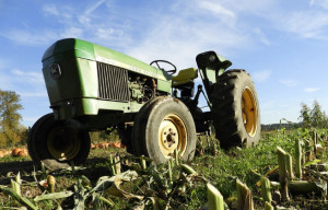 Controlli a tappeto sulle aziende agricole del Saluzzese: comminate sanzioni per 20 mila euro