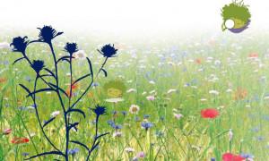 A Chiusa Pesio una mostra sulla conservazione della biodiversità vegetale