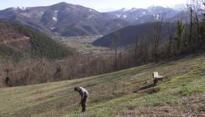 Il tartufo nero della valle Grana protagonista in Friuli