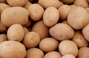 Domenica 22 settembre a Becetto di Sampeyre la Fiera della Patata (VIDEO)