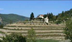 A Cortemilia un cantiere dimostrativo sulla pietra a secco