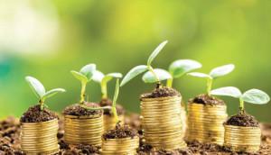 Coldiretti Piemonte sulla manovra: 'Confermare il bonus verde'
