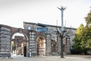 Alla scoperta di Penone con le visite guidate in San Francesco e una gita al Castello di Rivoli