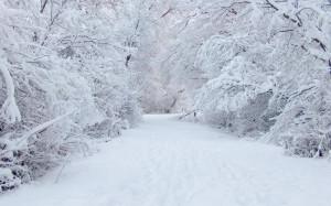 L'Arpa proclama l'allerta gialla per neve e rischio idrogeologico in provincia di Cuneo