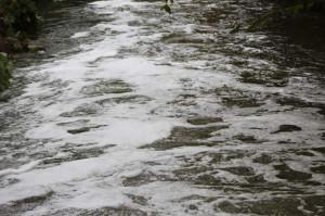 Schiuma nelle acque del Rio Torto a Verzuolo, in corso le analisi dell'Arpa