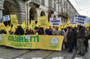 Coldiretti Piemonte: 'Dopo i 20 mila agricoltori in piazza a Torino arrivano i primi risultati'
