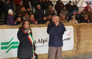 A Carrù torna la Fiera Nazionale del Bue Grasso: ottanta i capi in mostra nella prima giornata di premiazione