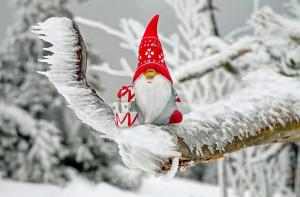 Buon Natale a tutti i lettori dalla redazione di Cuneodice